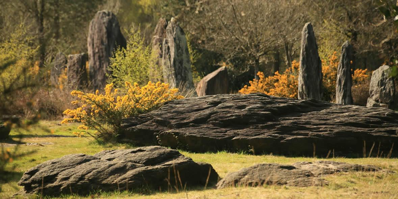 Sur le site mégalithique de Monteneuf: les menhirs